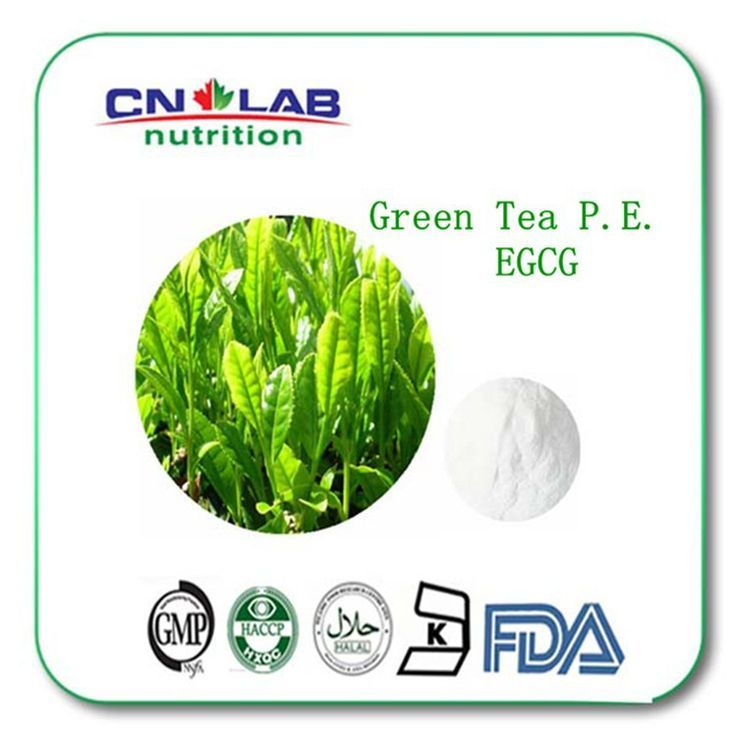 Buy 3 Get 1 free, Green Tea extract 98% Tea polyphenols diet weight loss product women slimming for sale