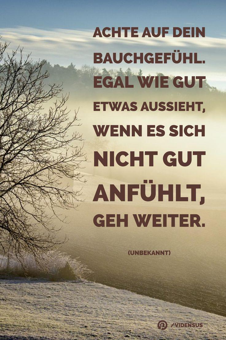 #zitate #sprüche #weisheiten #bauchgefühl