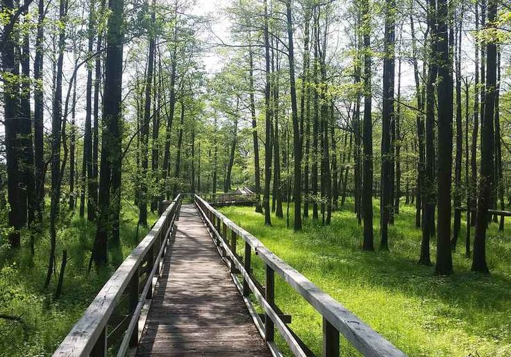 the bridge cycle path bremen osnabruck circuit in 7 days hike the most beautiful hiking trails travel destinations
