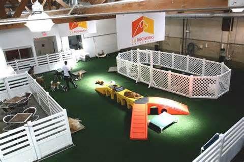 indoor dog park                                                       …
