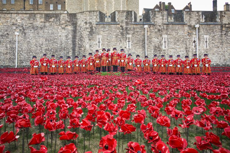 Ceramic artist Paul Cummins and stage designer Tom Piper have installed a sea of red poppies in the dry moat surrounding the Tower of London to mark the centenary anniversary of the first world war. Pippa Koszerek takes a closer look.