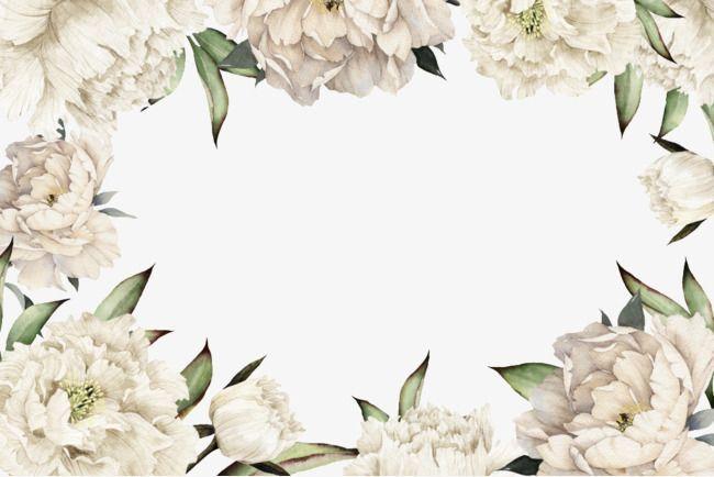 White Flowers Border Png Gambar Bingkai Hiasan
