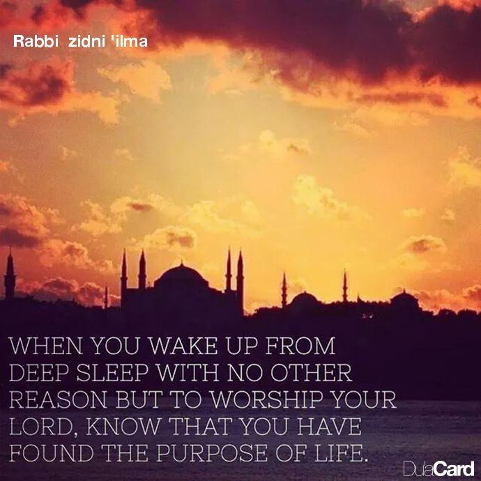 Rabbi zidni 'ilma