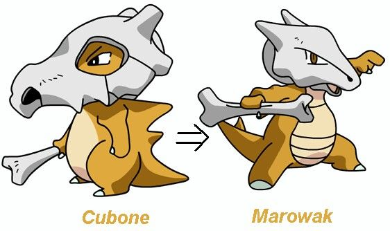 Cubone Evolution