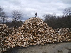 Types of wood to use when smoking meats