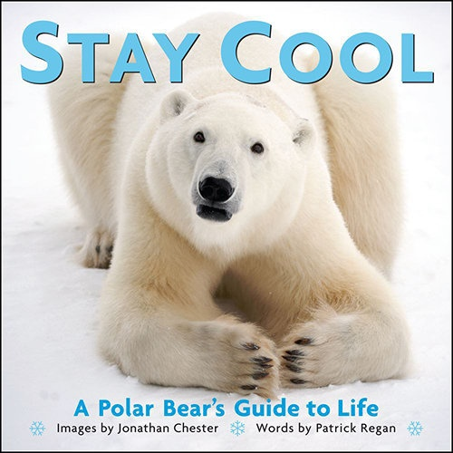 Stay Cool: A Polar Bear's Guide to Life Book: In Stay Cool, award-winning polar photographer Jonathan Chester and writer Patrick Regan reveal the uncanny life lessons to be learned from polar bears, those imposing but endlessly appealing kings of the Arctic.  $2.99  http://calendars.com/Bears/Stay-Cool:-A-Polar-Bears-Guide-to-Life-Book/prod201300012182/?categoryId=cat00173=cat00173#