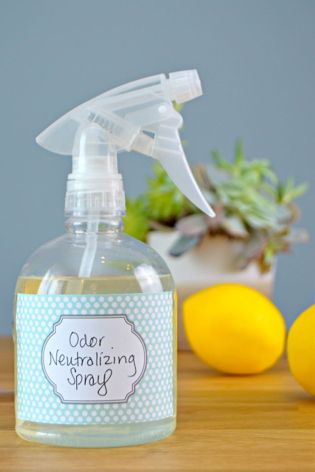 Homemade Odor Neutralizer Spray - Great for pet odors, dirty diaper odors, musty smells and any odor you need to neutralize. This spray absorbs odors naturally! via @Mom4Real