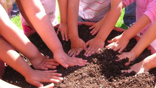 Offshoot of farm to school movement teaches children about where food comes from and helps shape habits before kids reach elementary school.