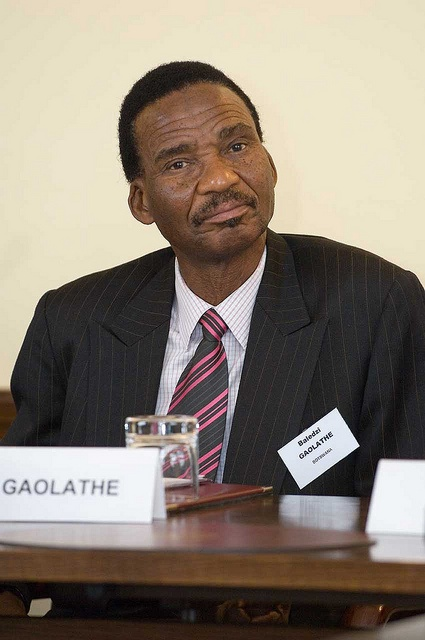 Africa: business, growth & poverty reduction - Mr Baledzi Gaolathe  (Botswanan Minister of Finance and Development Planning) joined our conference in 2007.