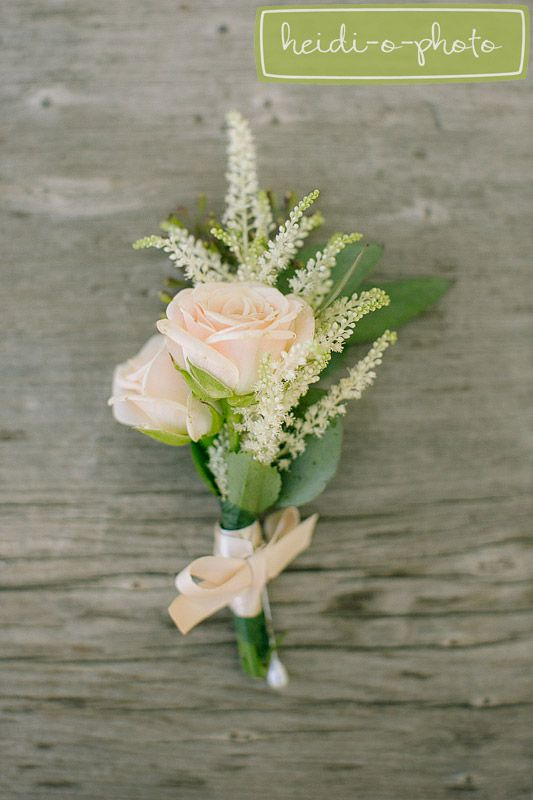 photography by www.heidiophoto.com. light pink garden rose with greens boutonniere.