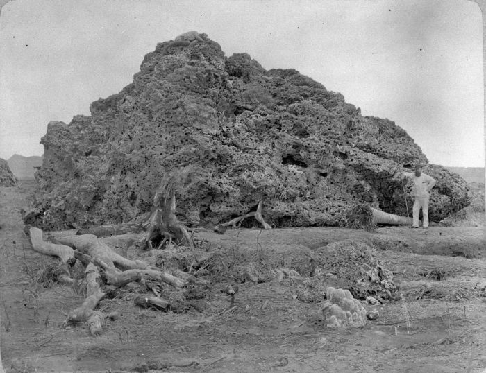 This Day in History: Aug 27, 1883: Krakatau explodes