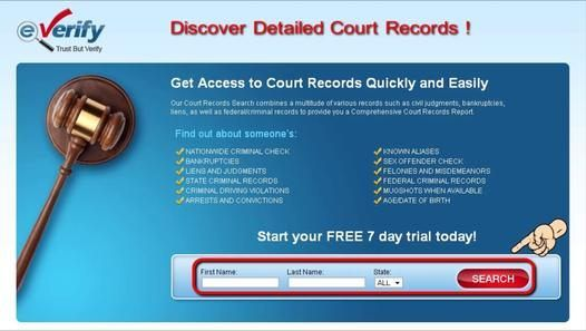 how to get a criminal background check on someone
