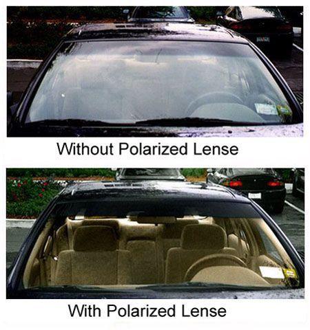 what polarized lenses really do