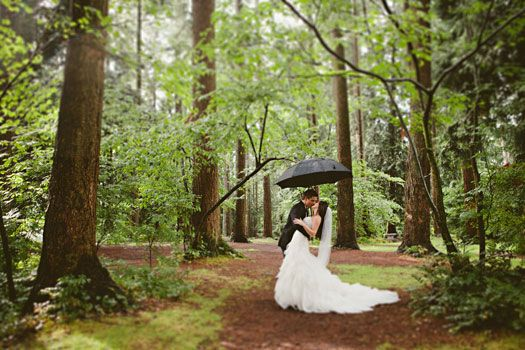 An Enchanted Forest Wedding from jacilynm.com
