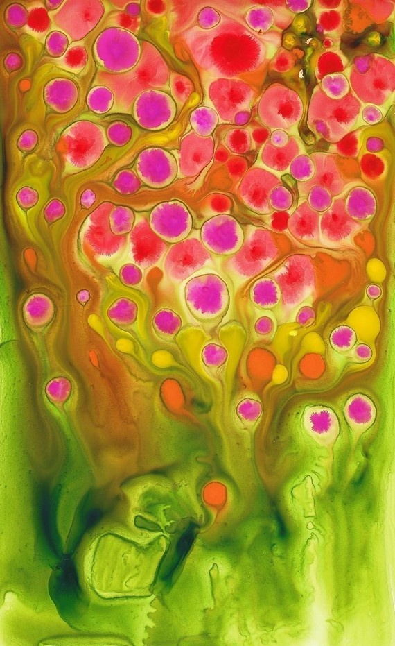 have 4 of her prints, gorgeous, amazing print quality, kathy panton australia