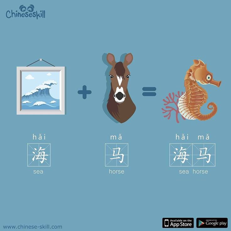 Seahorses (hǎi mǎ) are unique among fish for having necks and snouts that make them resemble horses. Did you know male seahorses get pregnant and deliver their offspring?  #seahorse #chineseskill #中文 #learnchinese #learnmandarin #mandarin #chinese #chineselanguage