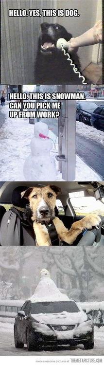 #dog and #snowman #humor