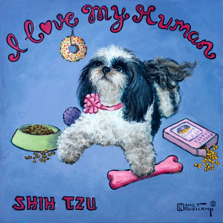 I Love My Human, a poster style print from renowned artist Janet Kruskamp. A spoiled white and black Shih Tzu with her hair cut short and wearing a pink bow on her pink collar, lays on her tummy with her head up,surrounded by food, treats and toys, her left front paw resting over a pink chew bone. A bowl of dog food on the left and a box of dog treats on the right, a ball and a donut hanging on a string from the first e in I Love My Human arched over the top of the blue background complete…