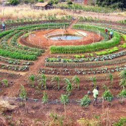 best 5180 le jardin se partage images on pinterest gardening. Black Bedroom Furniture Sets. Home Design Ideas