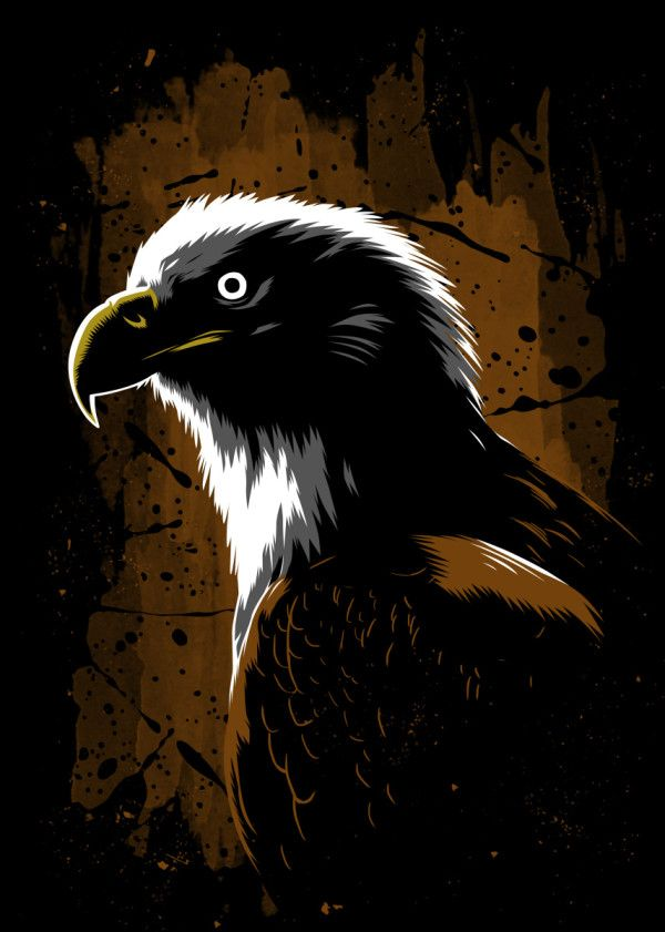 Eagle Stain Nature Poster Print Metal Posters In 2020 Nature