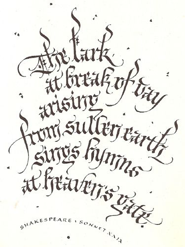238 Best Images About Calligraphy Lettering On Pinterest