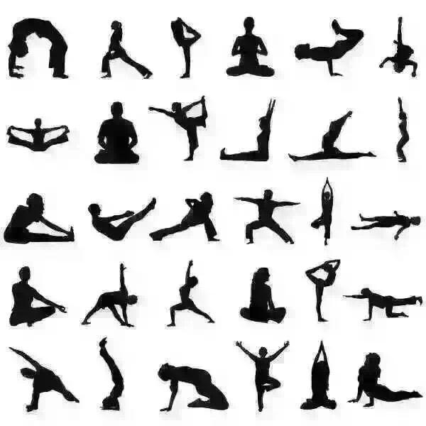 Bildergebnis für pictogram yoga pilates Rückenmuskulatur