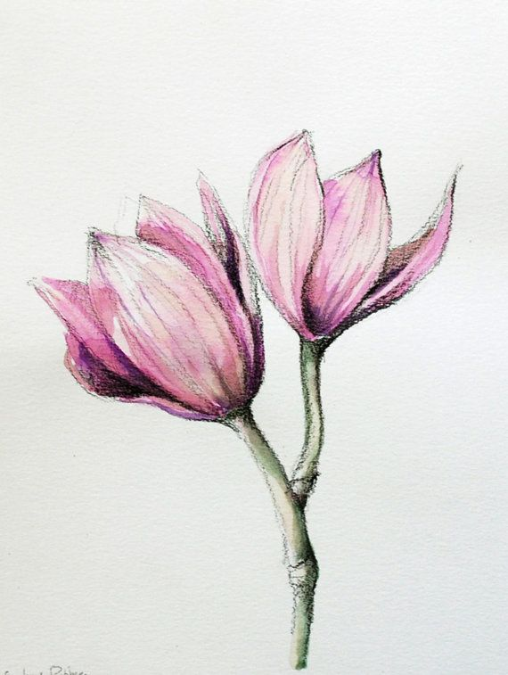 beautiful flowers drawings