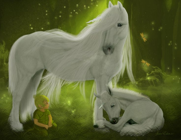 Unicorn's  Enchanted World by JaneEden