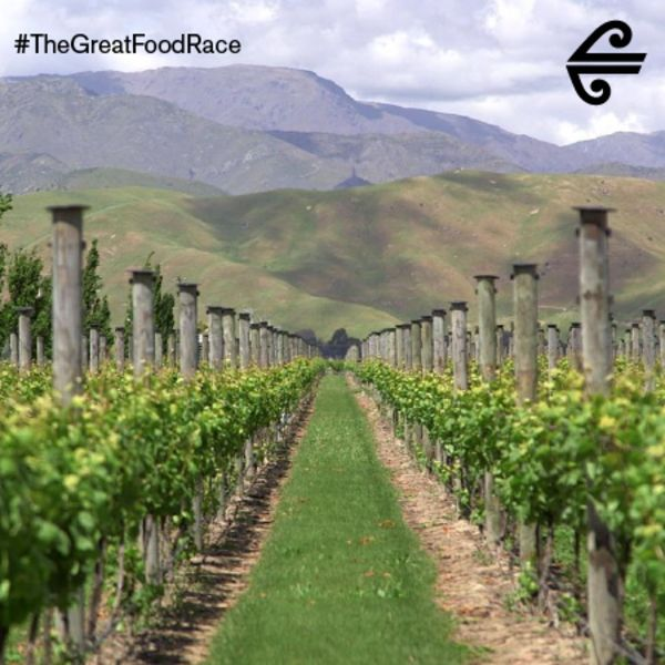 Great Food Race