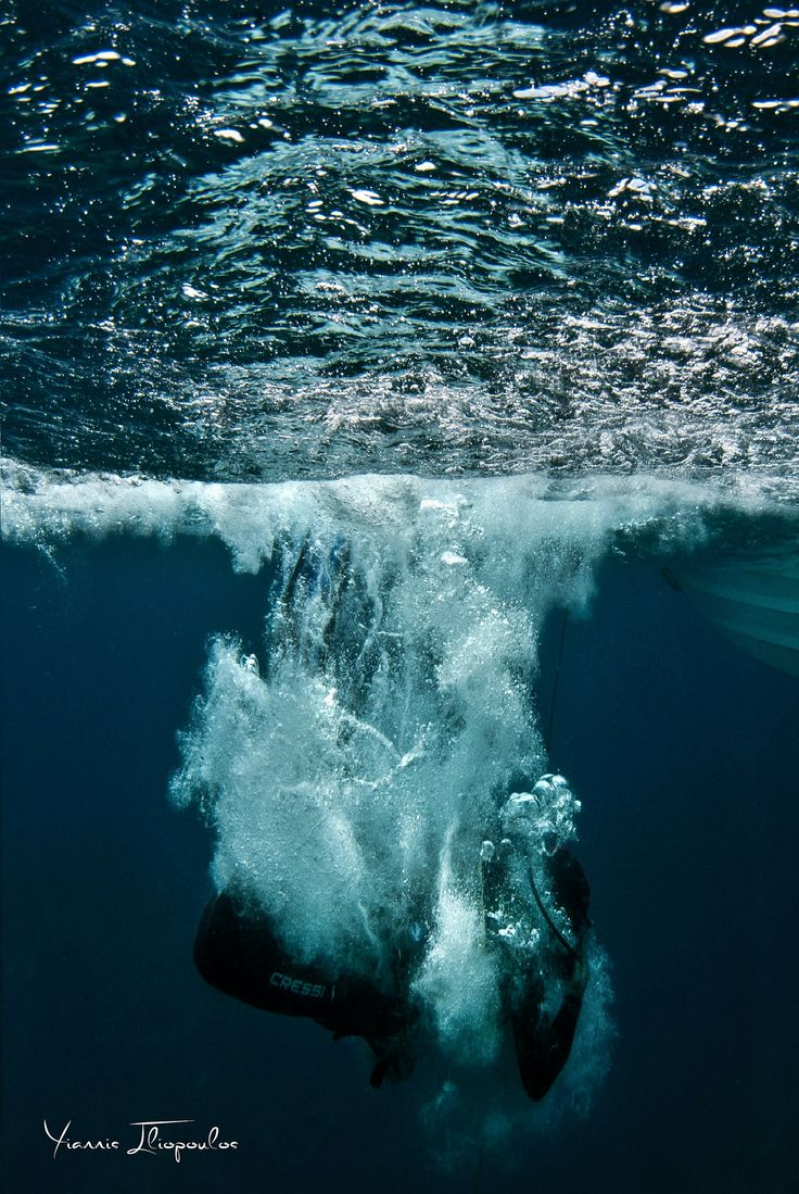And the journey begins...   Underwater Photography by Yiannis Iliopoulos