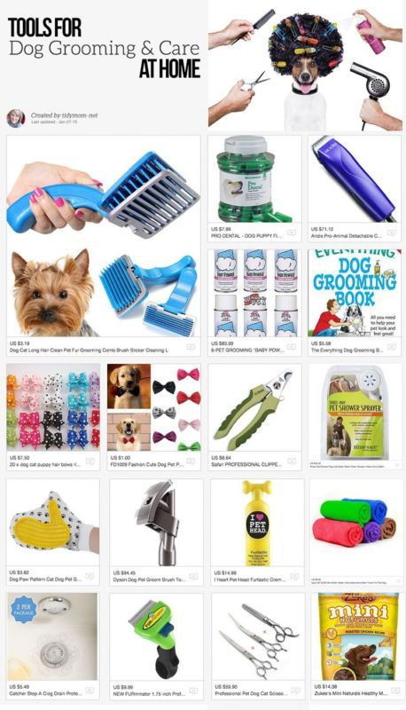Tools & Tips for Dog Grooming & Care at Home