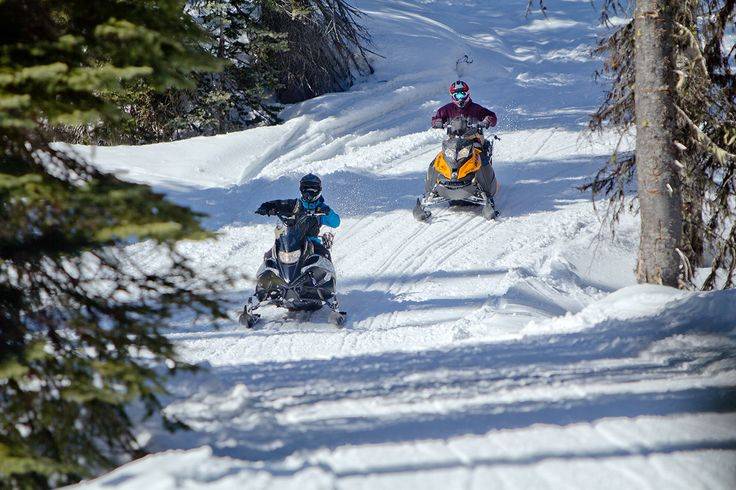 Snowmobiling in Kicking Horse Country? Golden, BC offers you that.
