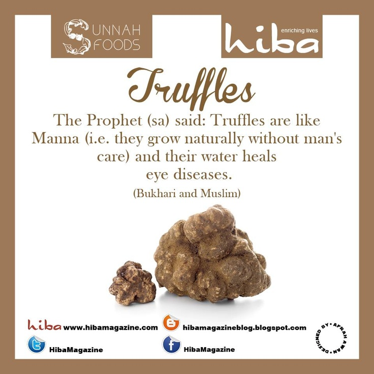 Sunnah Food: Truffles  Follow:pinterest.com/hibamagazine