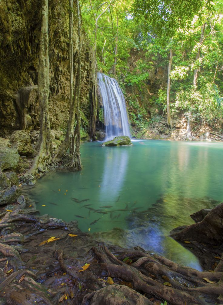 Costa Rica's Fairy Waterfall #costarica #centralamerica #viatortravel