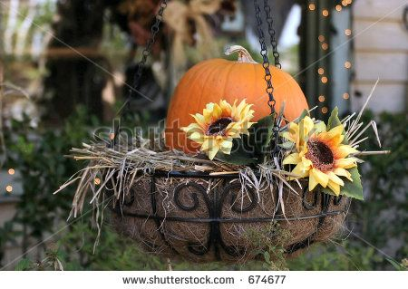 Pumpkin And Sunflower Planter It S Fall Y All Fall