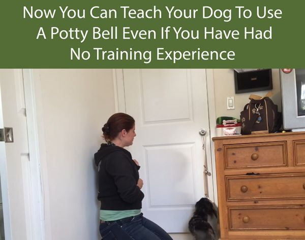 Dogs Train Your Dog To Use A Potty Bell To Go Outside Training
