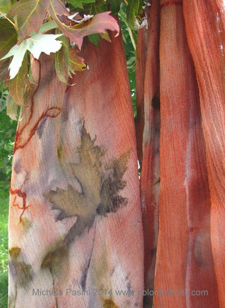 Rosso di Robbia Colori Naturali