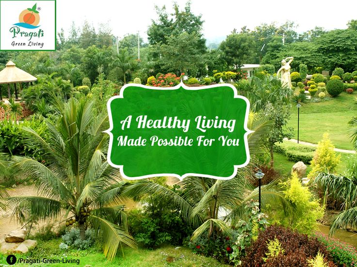A Healthy Living made possible for you. No Pollution, No Mosquitoes - Only the fresh and #GreenNature all around your living space. Contact http://www.pragatigreenliving.com/