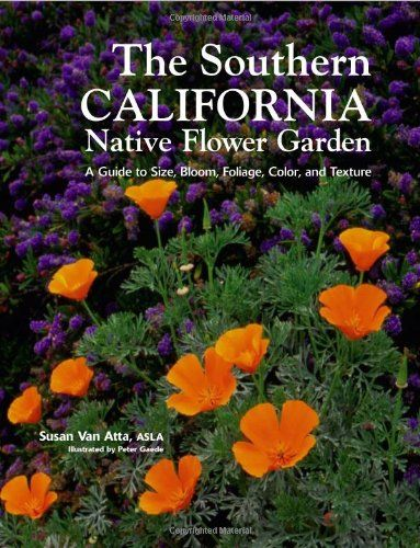 Southern California Native Flower Garden. Plants Thrive On Their Own With  Minimal Water, Pruning