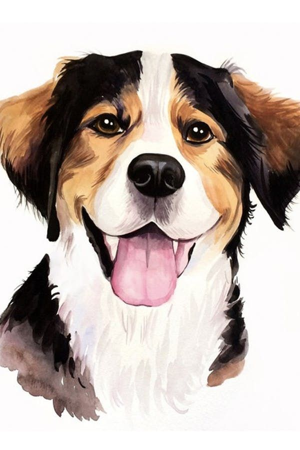 The Best Pet Portrait Artists On Etsy Pet Portraits Dog