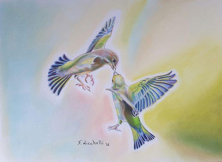 """""""Uccelli Tropicali"""" - studio sugli uccelli, realizzato con matite colorate e pastelli morbidi su carta - misure: 30x21 cm. - anno: 2016 #art #artwork #drawings"""