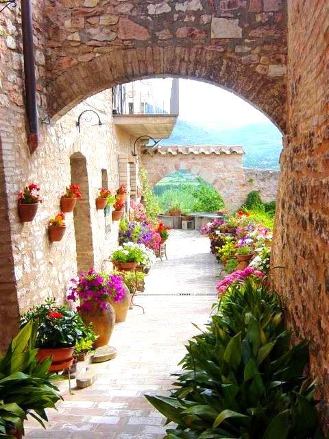 La magia di uno scorcio fiorito in paese. #Dalani #Flower #Home