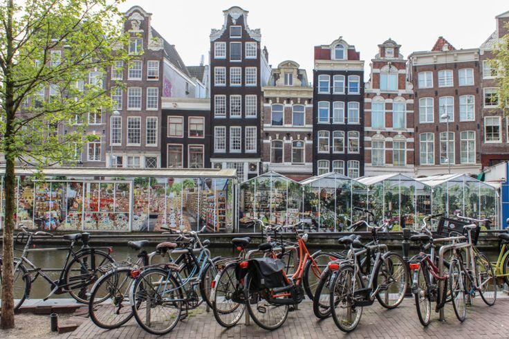 Mit dem Fahrrad durch Amsterdam � Ein Erfahrungsbericht