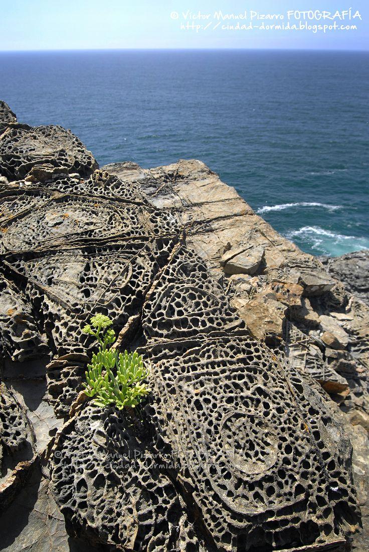 Parque Natural del Suroeste Alentejano y Costa Vicentina, la belleza geológica de una costa, Algarve - Alentejo litoral (Portugal)    Via Ciudad dormida Blog