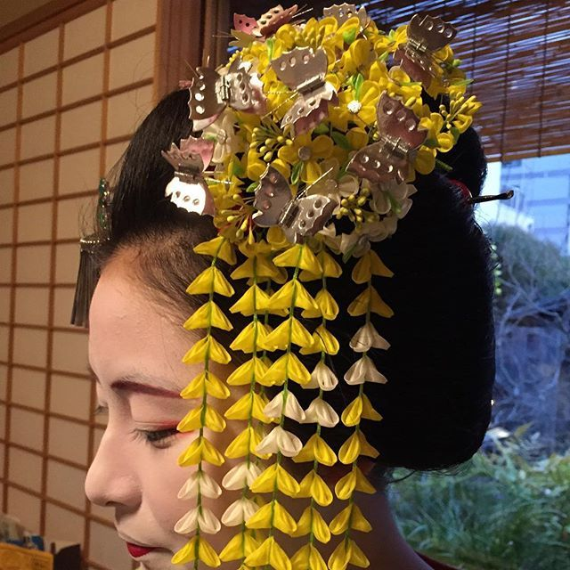 maiko Mitsuki wearing a canola kanzashi with long shidare petals
