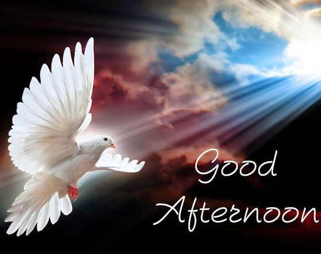 Good Afternoon quotes quote good afternoon good afternoon quote good afternoon quotes