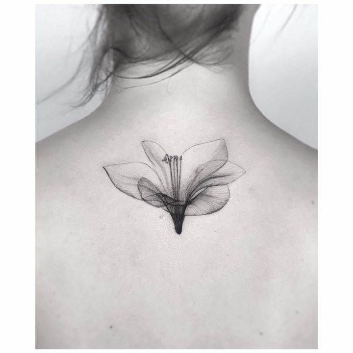 X-ray lilly flower tattoo, original photo by Nick Veasey.