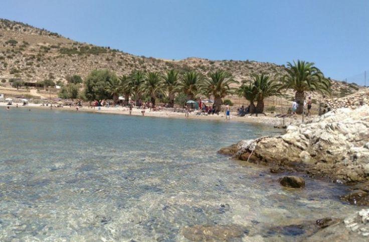 Αυτή η εξωτική παραλία με τους φοίνικες που θυμίζει Καραϊβική είναι στην Ελλάδα! Που βρίσκεται; (φωτό)