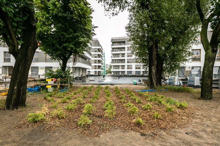 Na Smolnej 4 http://www.budimex-nieruchomosci.pl/poznan-osiedle-na-smolnej-4/