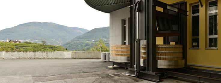 Pressa Marmonier: torchio utilizzato per la pigiatura dello Chardonnay e del Pinot nero base spumante